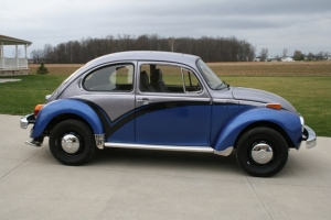 Kate's Beetle
