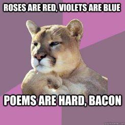 poemsarehard