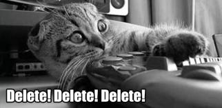 delete meme